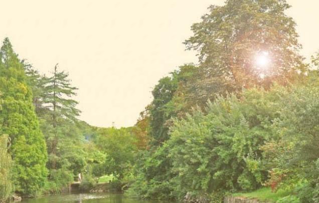 Atatürk Arboretumu Ziyaretinde Dikkat Edilmesi Gerekenler